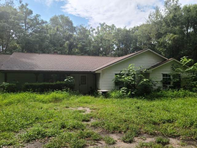 1801 W Highway 329, Citra, FL 32113 (MLS #OM608911) :: Bustamante Real Estate