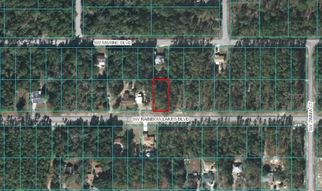 00 SW Rainbow Lake Boulevard, Dunnellon, FL 34431 (MLS #OM608921) :: Rabell Realty Group