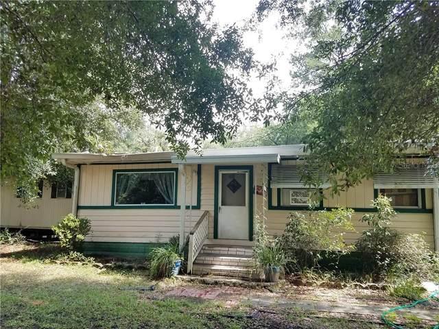 3901 S Sonny Terrace, Homosassa, FL 34448 (MLS #OM608965) :: Griffin Group