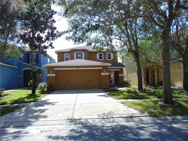31607 Spoonflower Circle, Wesley Chapel, FL 33545 (MLS #OM608994) :: Delgado Home Team at Keller Williams