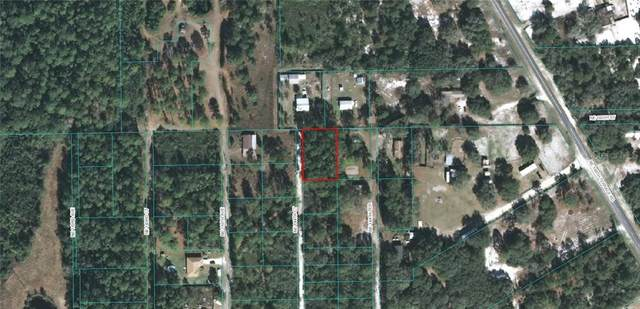 tbd NE 114 Court, Fort Mc Coy, FL 32134 (MLS #OM609042) :: Heckler Realty