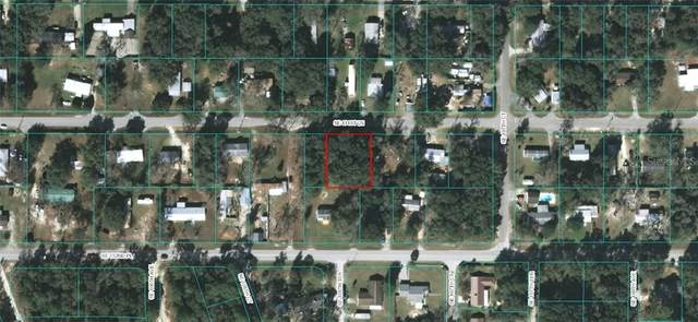 00 SE 131ST Lane, Ocklawaha, FL 32179 (MLS #OM609071) :: Rabell Realty Group