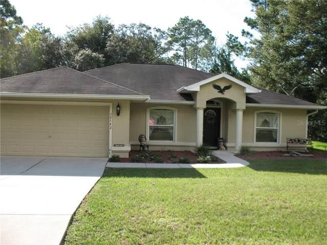 14142 SW 79TH Terrace, Ocala, FL 34473 (MLS #OM609093) :: Team Buky