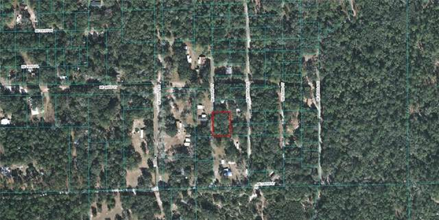 TBD NE 152ND Court, Fort Mc Coy, FL 32134 (MLS #OM609099) :: Alpha Equity Team