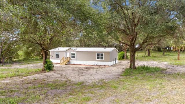 14145 SE Highway 42, Weirsdale, FL 32195 (MLS #OM609110) :: Team Bohannon Keller Williams, Tampa Properties
