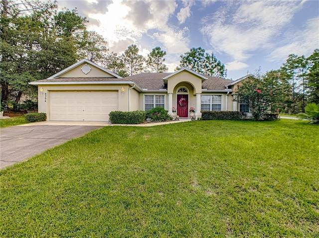 6396 N Earlshire Terrace, Citrus Springs, FL 34434 (MLS #OM609136) :: Rabell Realty Group