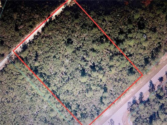 SW 32ND Avenue, Ocala, FL 34473 (MLS #OM609163) :: Alpha Equity Team