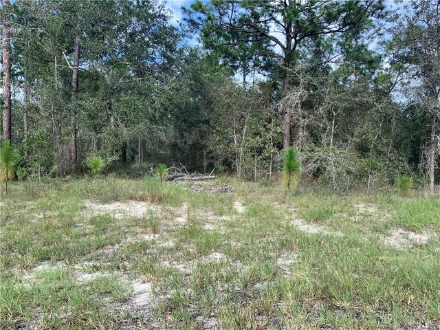 0 SE 139TH Terrace, Morriston, FL 32668 (MLS #OM609175) :: Baird Realty Group