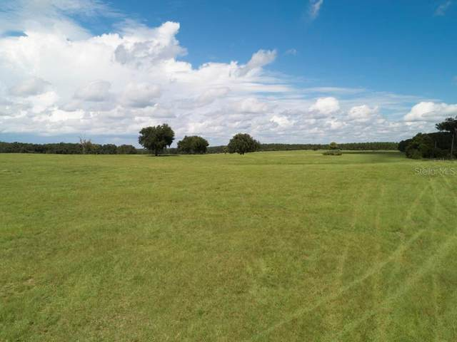 TBD SE 155TH Street, Weirsdale, FL 32195 (MLS #OM609200) :: Young Real Estate