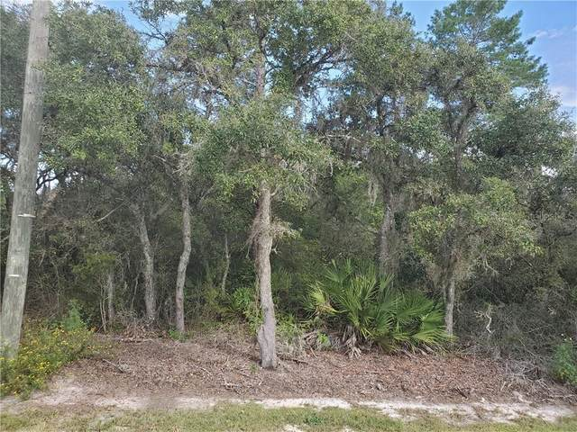 TBD SE 169TH AVE Road, Ocklawaha, FL 32179 (MLS #OM609270) :: BuySellLiveFlorida.com