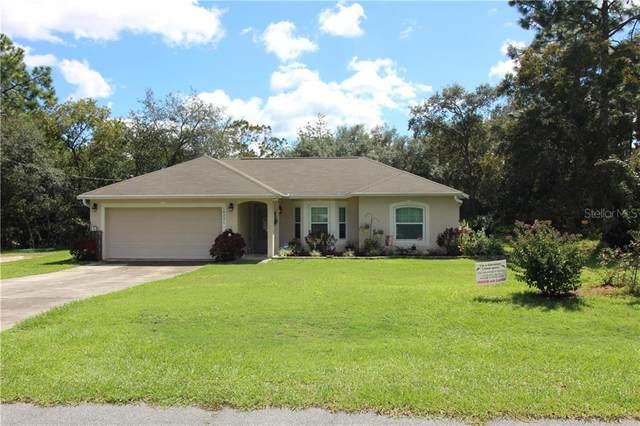10226 N Spaulding Drive, Citrus Springs, FL 34433 (MLS #OM609459) :: Team Buky