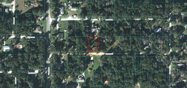 000 SE 131ST Place, Belleview, FL 34420 (MLS #OM609469) :: Young Real Estate