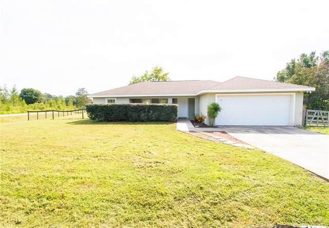 14765 SE 105TH Court, Summerfield, FL 34491 (MLS #OM609481) :: Team Buky