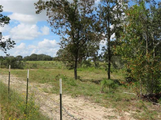 Hwy 328, Dunnellon, FL 34432 (MLS #OM609763) :: Griffin Group