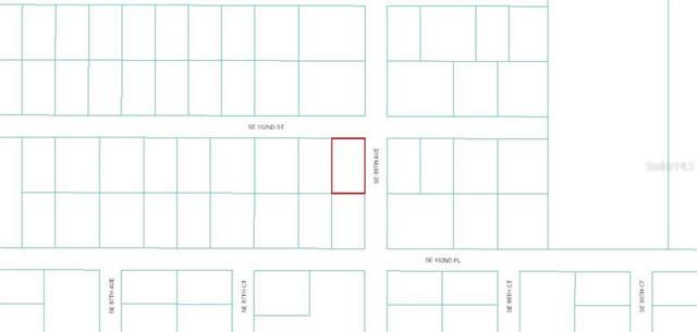 0 SE 162ND Street, Summerfield, FL 34491 (MLS #OM609784) :: Team Buky