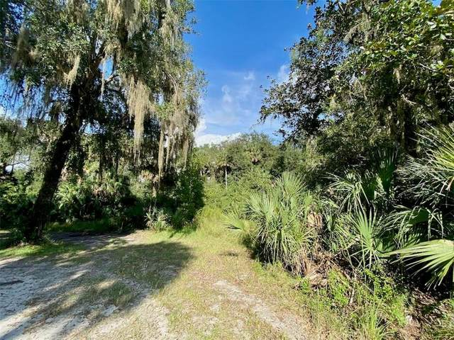 14904 E County Road 325, Hawthorne, FL 32640 (MLS #OM609864) :: Griffin Group