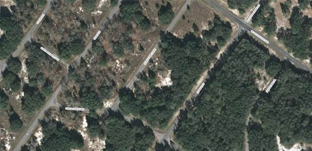 TBD Guava Lane Course, Ocklawaha, FL 32179 (MLS #OM609884) :: EXIT King Realty