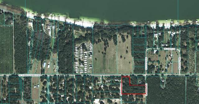 SE Sunset Harbor Road, Weirsdale, FL 32195 (MLS #OM610025) :: Young Real Estate