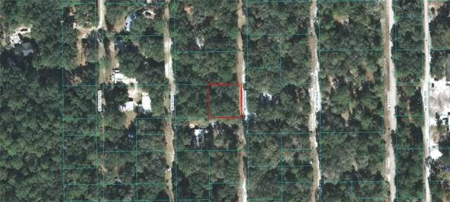 00 NE 136 Terrace, Fort Mc Coy, FL 32134 (MLS #OM610066) :: The Lersch Group