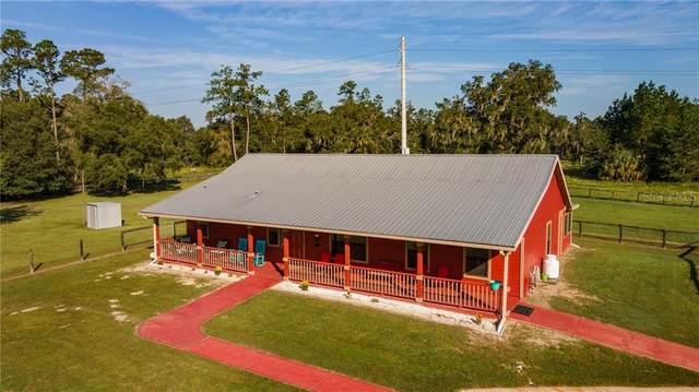 15981 NW 185TH Street, Williston, FL 32696 (MLS #OM610266) :: Premier Home Experts