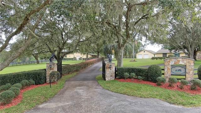 13306 NW 82ND STREET Road, Ocala, FL 34482 (MLS #OM610276) :: Memory Hopkins Real Estate