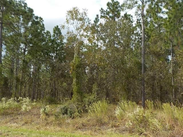 TBD SW Blueberry Lane, Dunnellon, FL 34431 (MLS #OM610281) :: Your Florida House Team