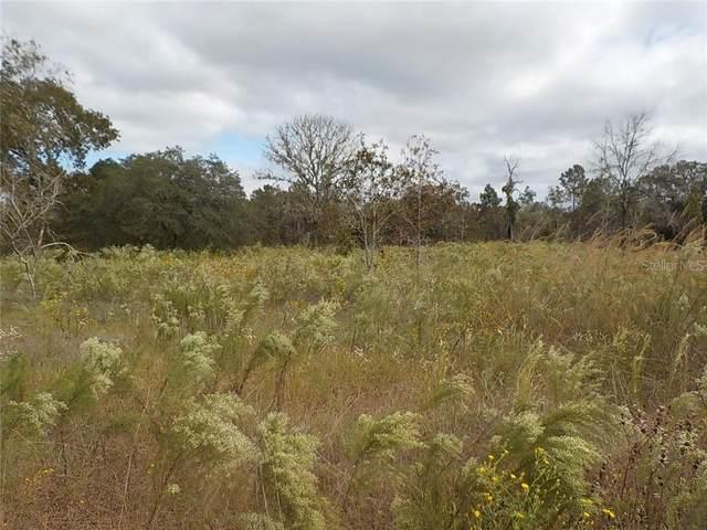 Corner Papaya Ln And Persimmon Lane, Dunnellon, FL 34432 (MLS #OM610284) :: Delgado Home Team at Keller Williams
