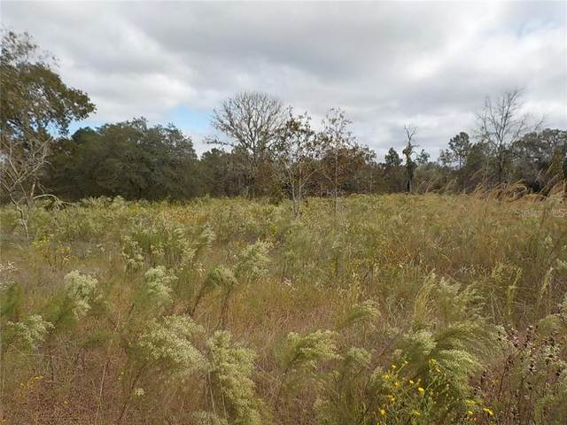 Corner Persimmon Ln And Nectarineln, Dunnellon, FL 34431 (MLS #OM610285) :: Griffin Group