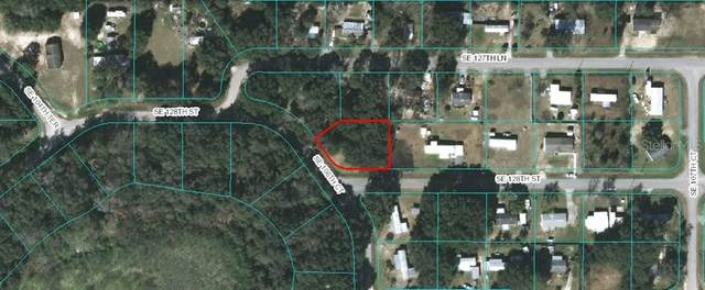 Se 128Th St, Belleview, FL 34420 (MLS #OM610414) :: Young Real Estate