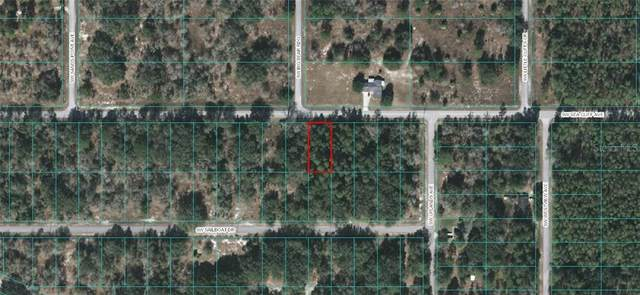 00 SW Sea Cliff Avenue, Dunnellon, FL 34431 (MLS #OM610418) :: Griffin Group