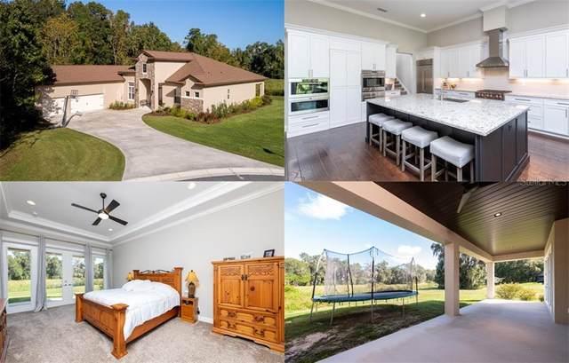 10060 SE 41ST Avenue, Belleview, FL 34420 (MLS #OM610445) :: BuySellLiveFlorida.com