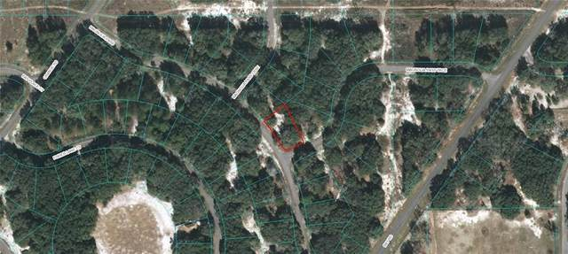 TBD Magnolia Pass & Magnolia Pass Trace, Ocklawaha, FL 32179 (MLS #OM610463) :: Young Real Estate