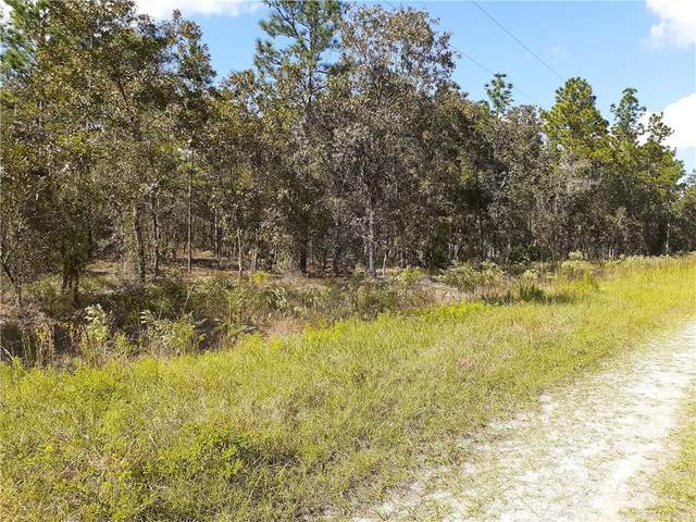 Sw 128Th Terrace, Dunnellon, FL 34432 (MLS #OM610644) :: EXIT King Realty