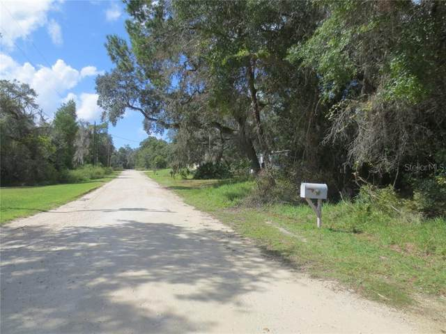 Silver Springs, FL 34488 :: Young Real Estate