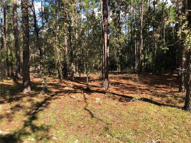 TBD SW 84 Loop, Dunnellon, FL 34431 (MLS #OM610701) :: Carmena and Associates Realty Group