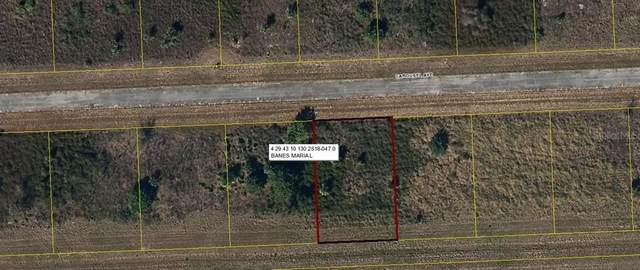 111 Carousel Avenue, Labelle, FL 33935 (MLS #OM610812) :: Southern Associates Realty LLC