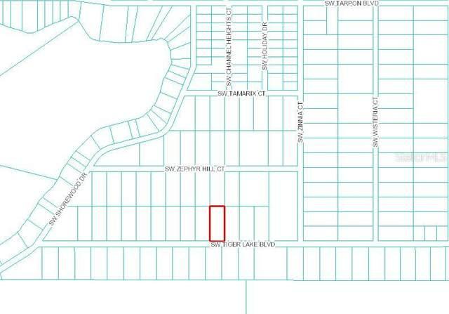 0 SW Tiger Lake Blvd, Dunnellon, FL 34431 (MLS #OM610837) :: Griffin Group