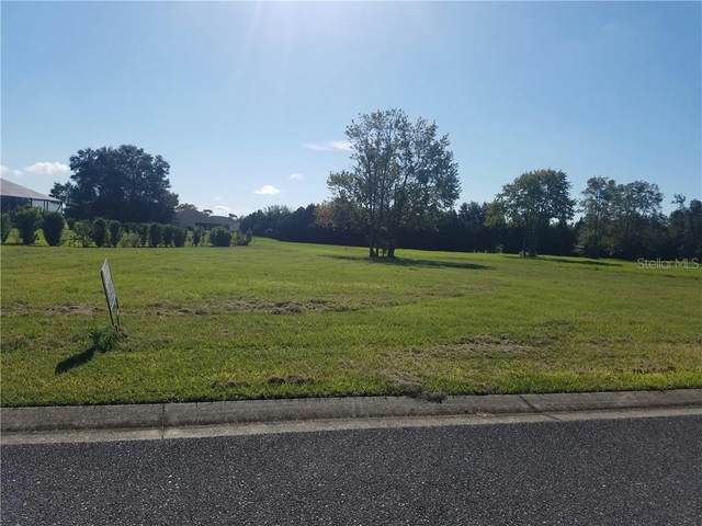 0 SE 61ST Terrace, Belleview, FL 34420 (MLS #OM611031) :: MVP Realty