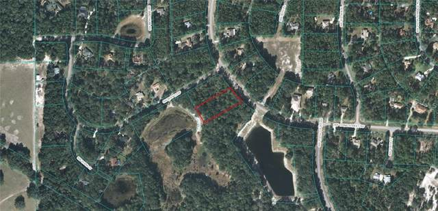 21658 SW 102ND STREET Road, Dunnellon, FL 34431 (MLS #OM611169) :: Baird Realty Group