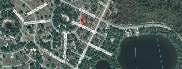 TBD Malauka Radial Terrace, Ocklawaha, FL 32179 (MLS #OM611317) :: Delgado Home Team at Keller Williams