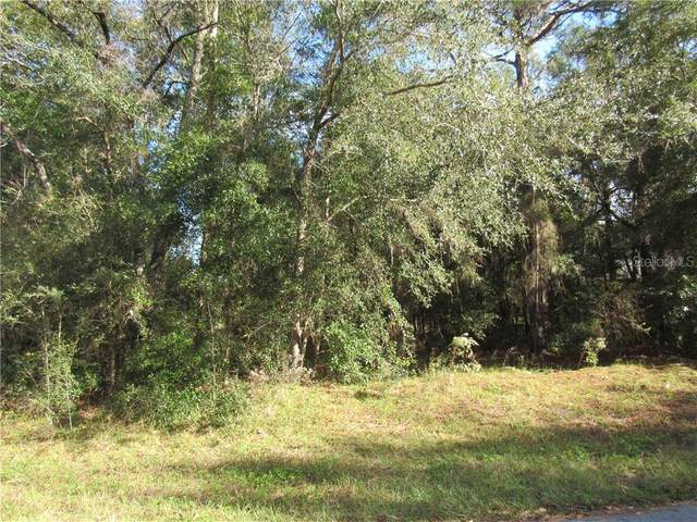 0000 SW 98TH PLACE ROAD, Dunnellon, FL 34432 (MLS #OM611411) :: Lockhart & Walseth Team, Realtors