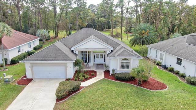 11566 SW 69TH Circle, Ocala, FL 34476 (MLS #OM611413) :: Cartwright Realty