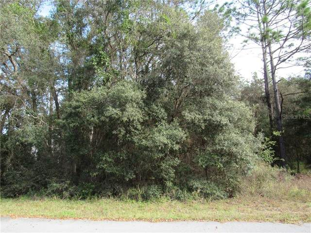 0000 SW 98TH PLACE ROAD, DUNNELLON, FL 34432, Dunnellon, FL 34432 (MLS #OM611571) :: Lockhart & Walseth Team, Realtors