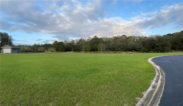 0 NE 60TH Terrace, Silver Springs, FL 34488 (MLS #OM611579) :: CGY Realty