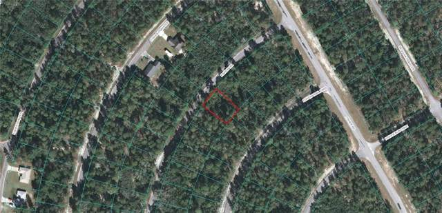 Fisher Trail, Ocklawaha, FL 32179 (MLS #OM611668) :: Lockhart & Walseth Team, Realtors