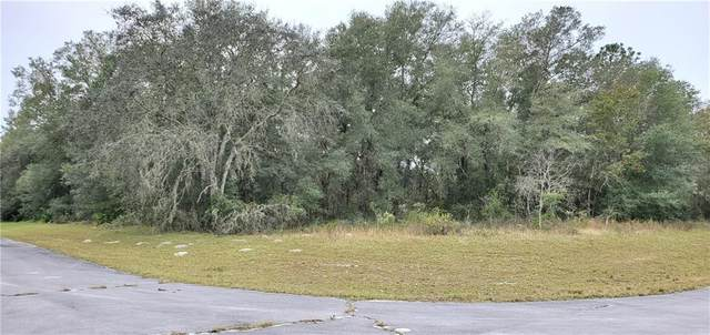 TBD SW 138 Lane, Ocala, FL 34473 (MLS #OM611678) :: Carmena and Associates Realty Group