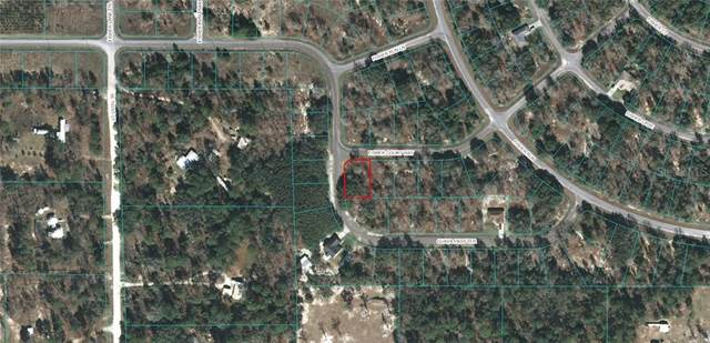 Fisher Court Way, Ocklawaha, FL 32179 (MLS #OM611702) :: Griffin Group