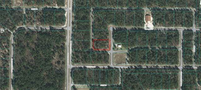 Sw 136Th Street, Ocala, FL 34473 (MLS #OM611711) :: Sarasota Home Specialists