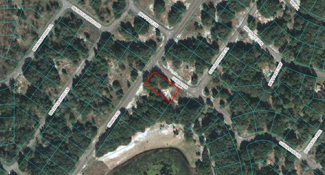 LOT 5 Orange Road, Ocklawaha, FL 32179 (MLS #OM611763) :: Pepine Realty