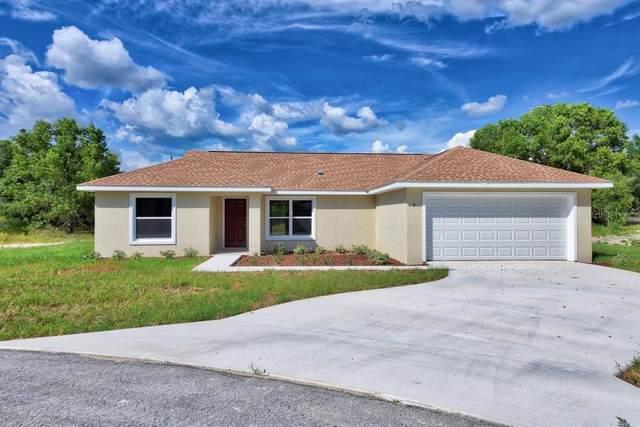 32 Dogwood Loop, Ocala, FL 34472 (MLS #OM611774) :: Southern Associates Realty LLC